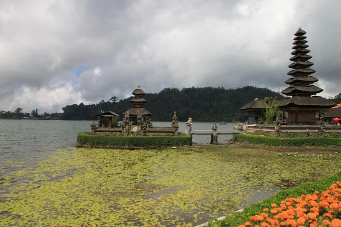 Temple sur l'eau de BEDUGUL.