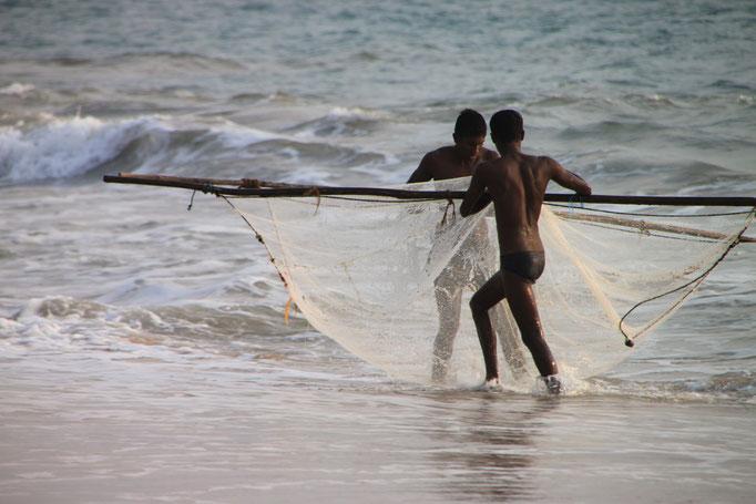 Sur la côte à AMBALANGADA.