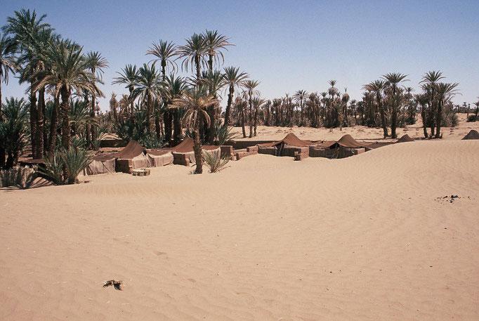 Aux portes du désert à ZAGORA.