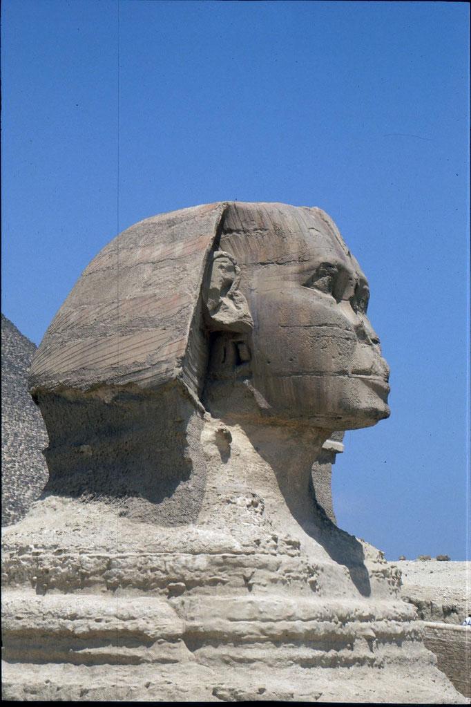 """Le sphinx appelé aussi """"le père de la terreur""""."""