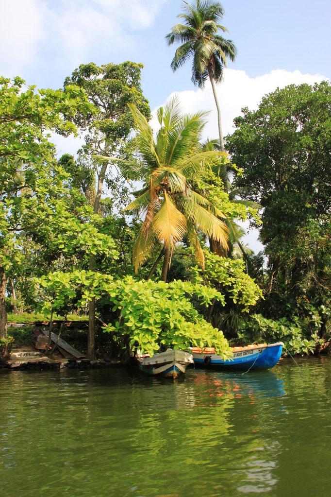 Ballade en bateau sur le lagon de ALUTHAMA.