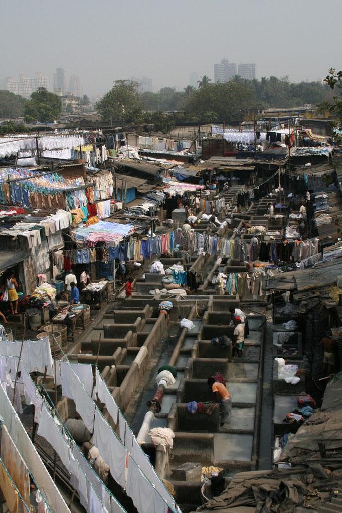 Le slum (bidonville) des laveries. MUMBAÏ.
