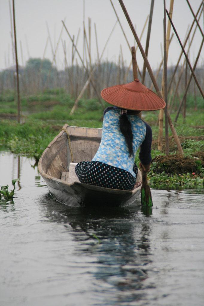 Lac Inle. MYANMAR
