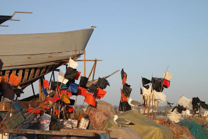 Dans le petit port d'ESSAOUIRA.
