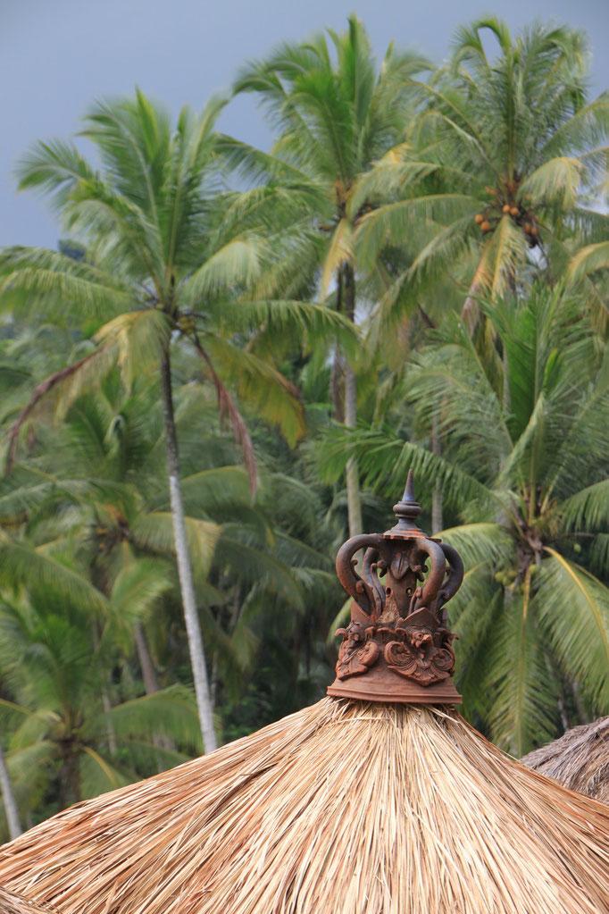 Sur l'île de LOMBOK.