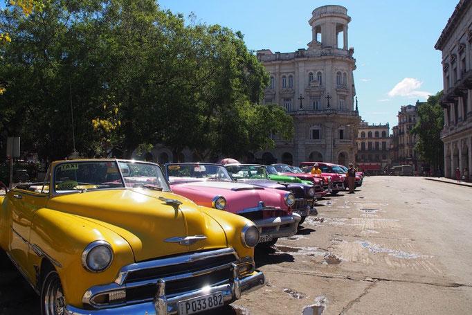 クラシックカーは乗用車として走っていたり タクシーとしてハバナで暮らす人たちの大切な移動手段となっていて