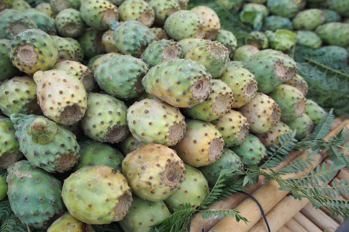 メキシコでもよく見たサボテンの実は こんな見た目だけど梨とすいかを足したような食感と味♡