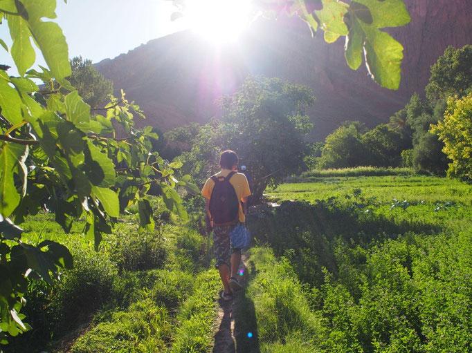 砂漠の町からバスに揺られて トドラ渓谷へ向かうためトドラの村へ