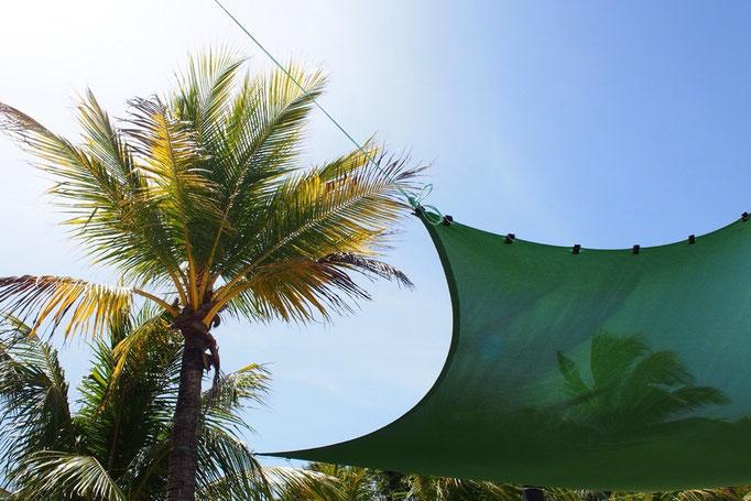 それにしてもカリブ海の陽射しはすごく強い...日焼けし過ぎないように注意しないと...