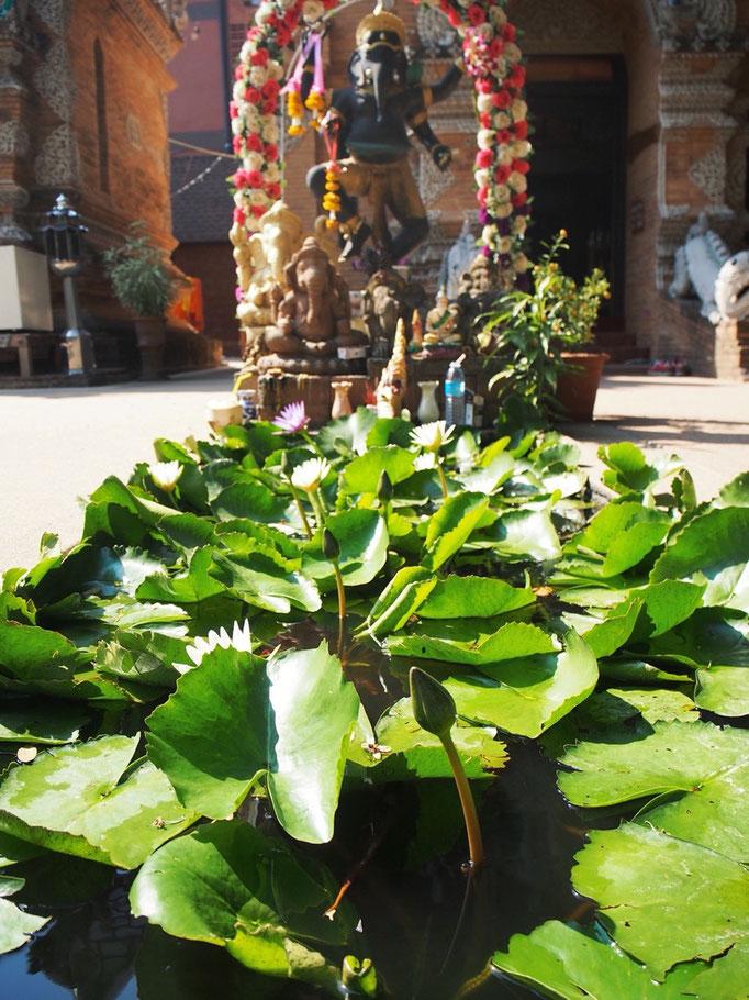 ガネーシャさんらしき象もいたけれど ここは仏教寺院な気もするし...うーん 難しい