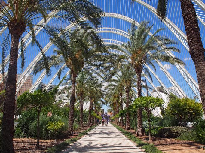 植物の緑とどこまでも青い空 近未来を感じさせる建築の不思議な一体感がおもしろかったです