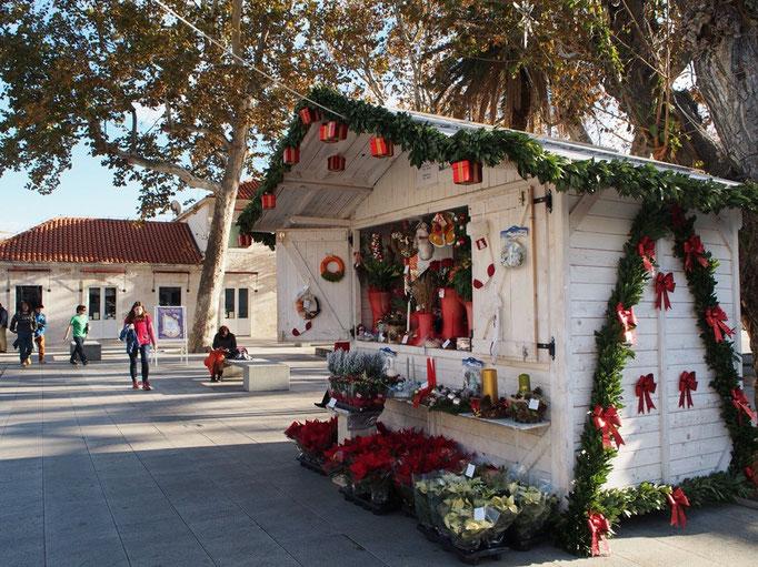 お腹いっぱいになったら 旧市街にお散歩へ 入り口前のお店はクリスマス仕様に♡
