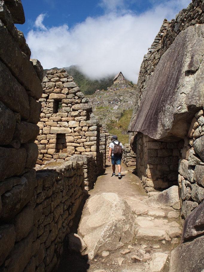 石垣は大小の石を組み合わせ 密着するように作られています