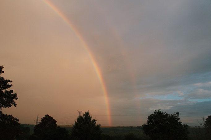 雨の日もあったけれど 夕方には雨があがってこんなに大きな虹が見えたことも ありがたい雨だったみたい