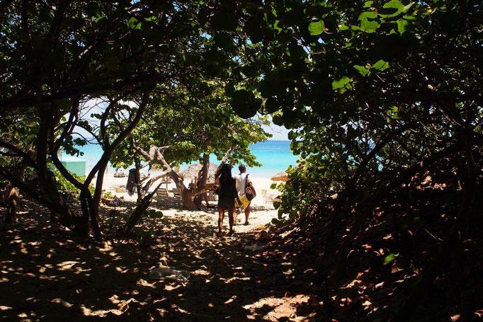 ハバナからは30分ほどバスに乗り 綺麗なビーチへ行くことも ビーチへ抜ける道はまるでトンネルみたい