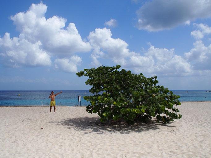 南の島っぽい植物と一緒に記念撮影