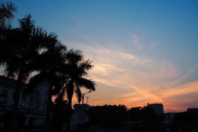 夜行バスの待ち時間 ヤシの木越しに眺めた夕焼け