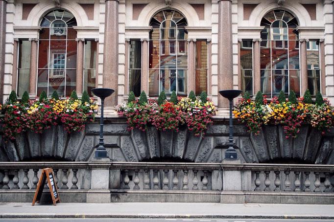 お花がカラフルで 歴史を感じさせる街並みと相まって素敵な雰囲気 眺めているだけで楽しい