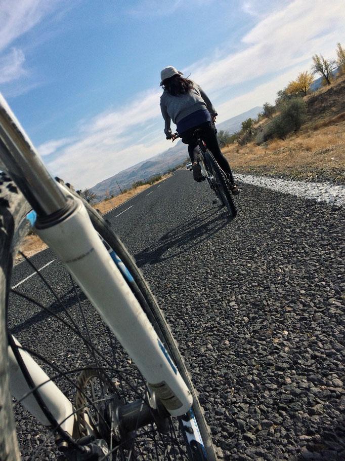 自転車に乗るのはいつぶりだろう 日本では毎日のように乗っていたから 自転車はやっぱりワクワクする
