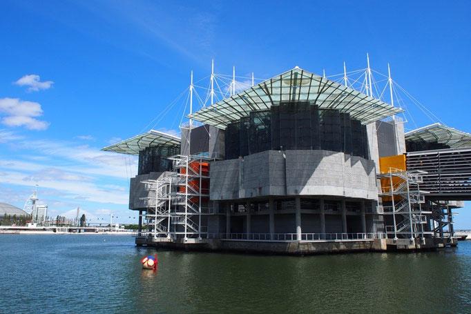 リスボン水族館の設計は大阪の海遊館と同じ建築家の方だそう