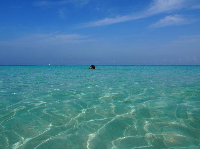 足元まで綺麗に見えるので 海の中の恐怖心が和らいで 泳ぐ練習もはかどります