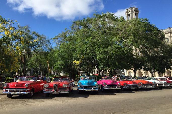 ハバナの街ではさまざまな形で今も元気に活躍しているクラシックカー達に出会うことができます