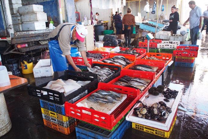 久しぶりに海の近くの土地 魚市場へお魚を仕入れに
