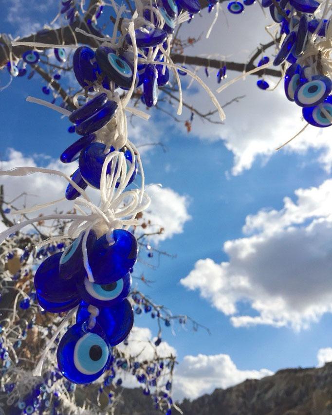 この日も雲が少しあるけれど快晴 この日は野外博物館とローズバレーまでお出かけ