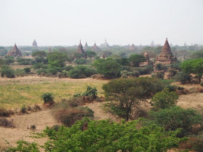 バガンの平原には 3000以上もの仏塔(パヤー)や寺院が連なっていて 今までに観たことのないような景色