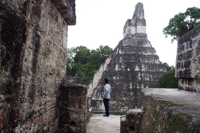ティカル遺跡の敷地はとても広く 約16㎢の空間に3000にも及ぶ建造物があります