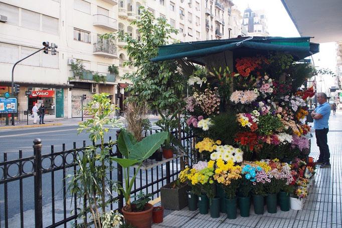 ブエノスアイレスは南米でも治安が悪いと言われているけれど 街中でこんなお花屋さんを見つけるとなんだかほっこり♡