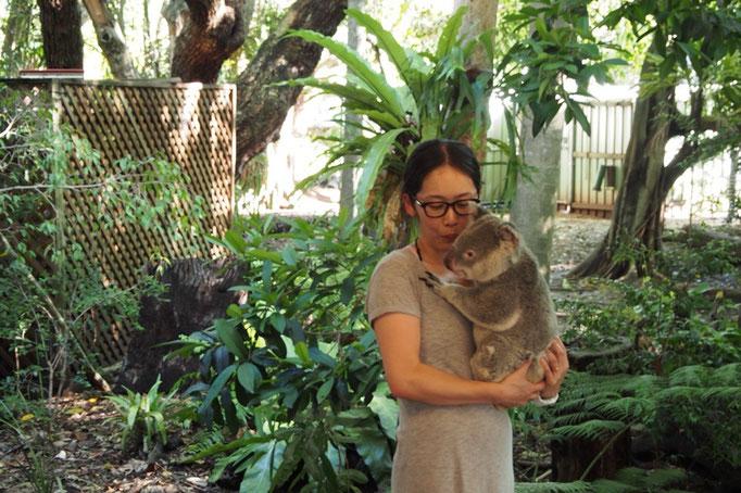 ここではコアラを抱っこして記念撮影ができます