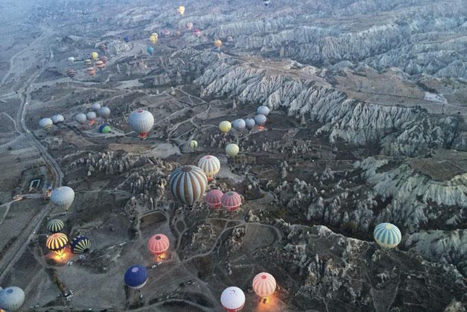 上から気球を観てみると なんとなくクラゲみたいに見えて面白い