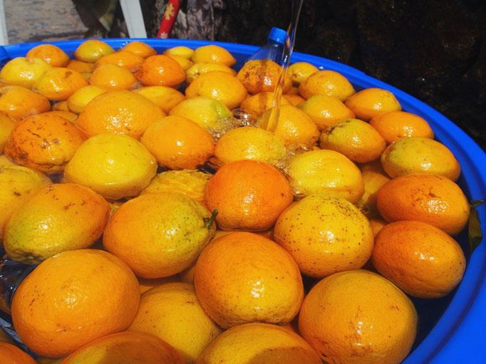 夜景を見に高台まで 登り始める前にオレンジジュースでエネルギーチャージ