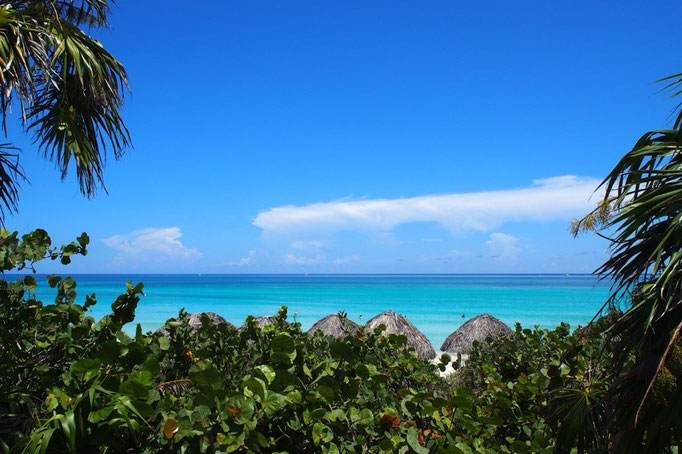 ハバナからバスに乗りバラデロへ バラデロは海に向かって伸びる半島がそのままビーチになっているビーチリゾート