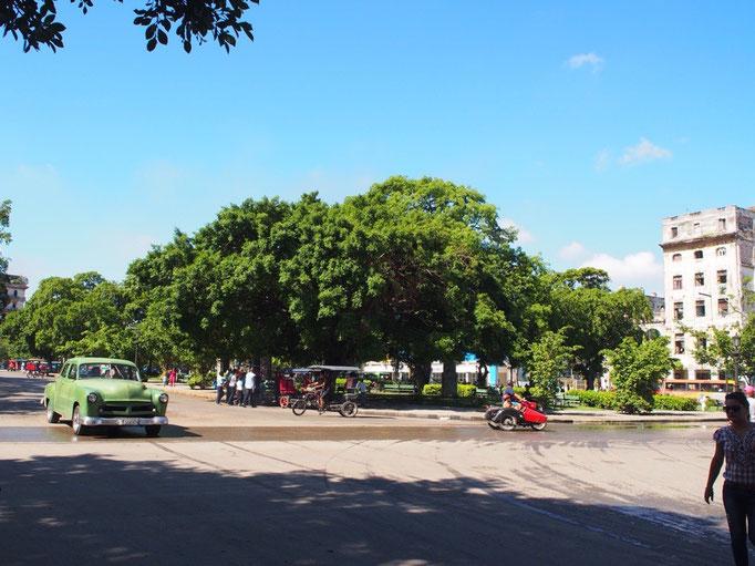 ハバナの街を走るクラシックカー その①