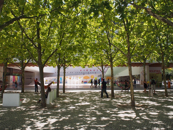 この日はヨーロッパ最大規模の水族館であるリスボン水族館へ