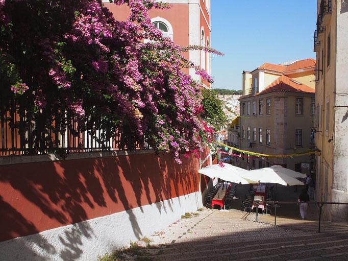 リスボンは街並みもとてもかわいくて 久しぶりにカメラを持って歩きたくなる街
