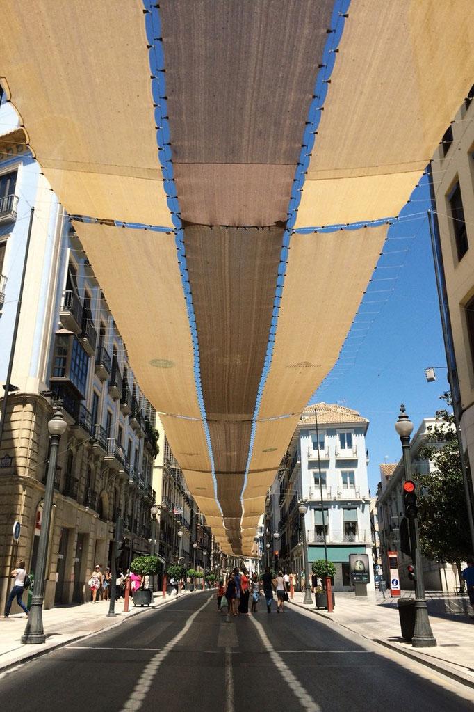 グラナダの街はこじんまりながらも 街並みが整っていてバルもたくさん 歩いていて楽しい