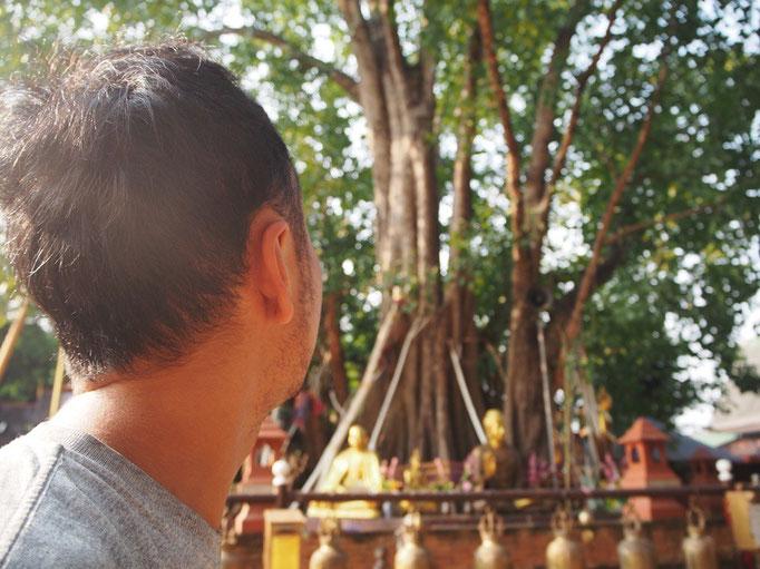 この日は 少し早起きをして 寺院を観にお出かけ