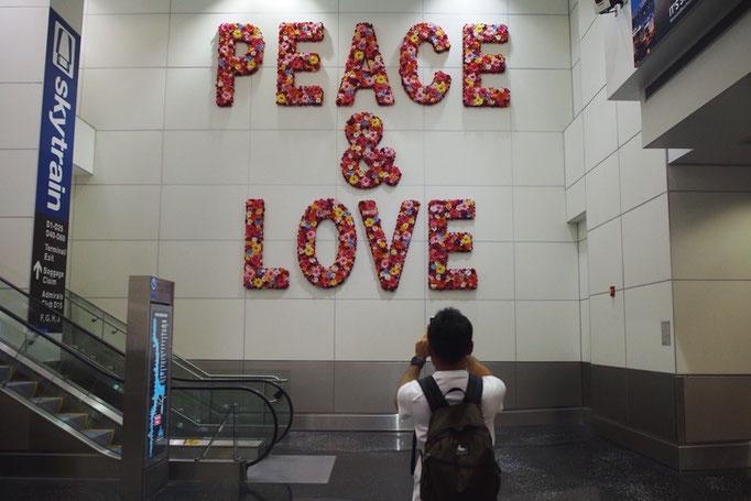 マイアミ空港はとても綺麗で こんな壁のデザインがあったり アートスペースがあったりして散策するのも楽しい