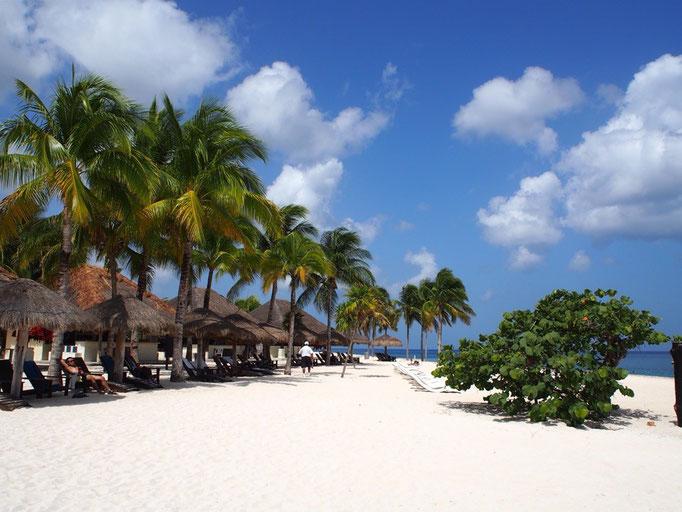 白砂のビーチが長く続いて 海の色が綺麗なブルーで透明度も抜群