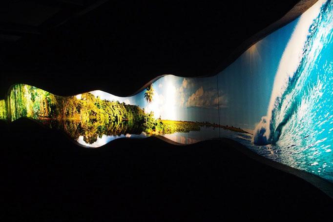 室内は真っ暗で 水槽や展示物だけが浮かび上がるように光を浴びて とてもきれいでした