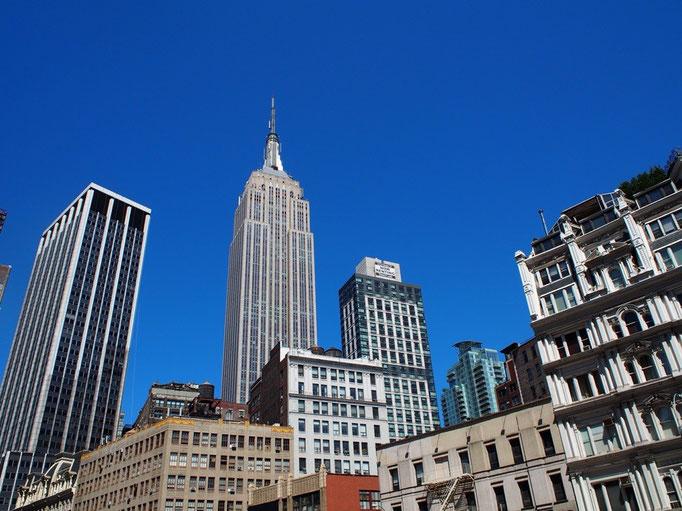NYはさまざまな魅力とエネルギーにあふれた街でした また短期旅行で出直してきます(笑)