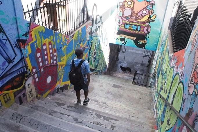 壁や建物を眺めながらのお散歩 いろいろと見たくなって どんどん足が進みます