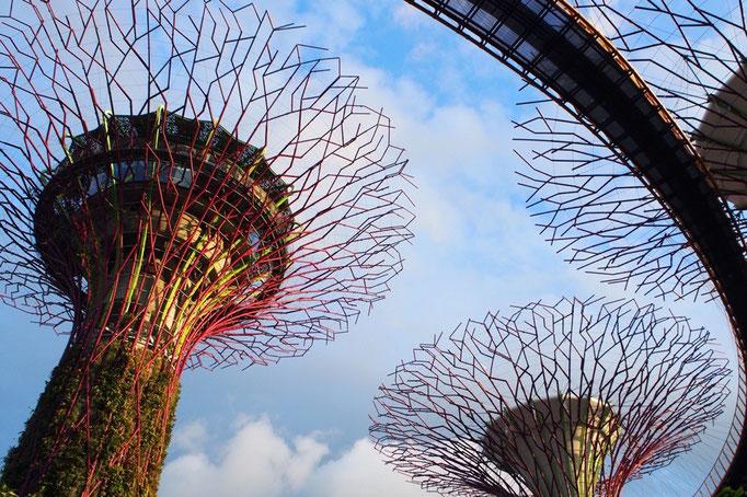 シンガポールでは連日いろいろなところでショーが行われていて この日はここでショーを楽しむことに。