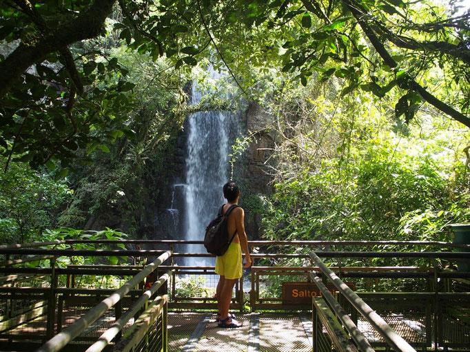 """雄大な滝が数多くあるイグアス国立公園の中で 私が1番好きだった場所 """"Saito Chico"""""""