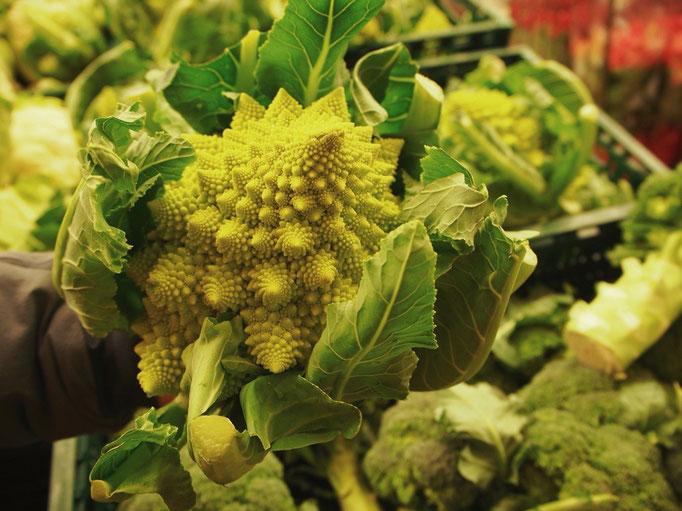 野菜売り場にブロッコリーと一緒に並んでいた ローマ風ブロッコリー どんな味がするんだろう?
