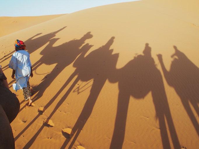 みんなで並んで進んで行くと ラクダの影も並んで進んでかわいい♡