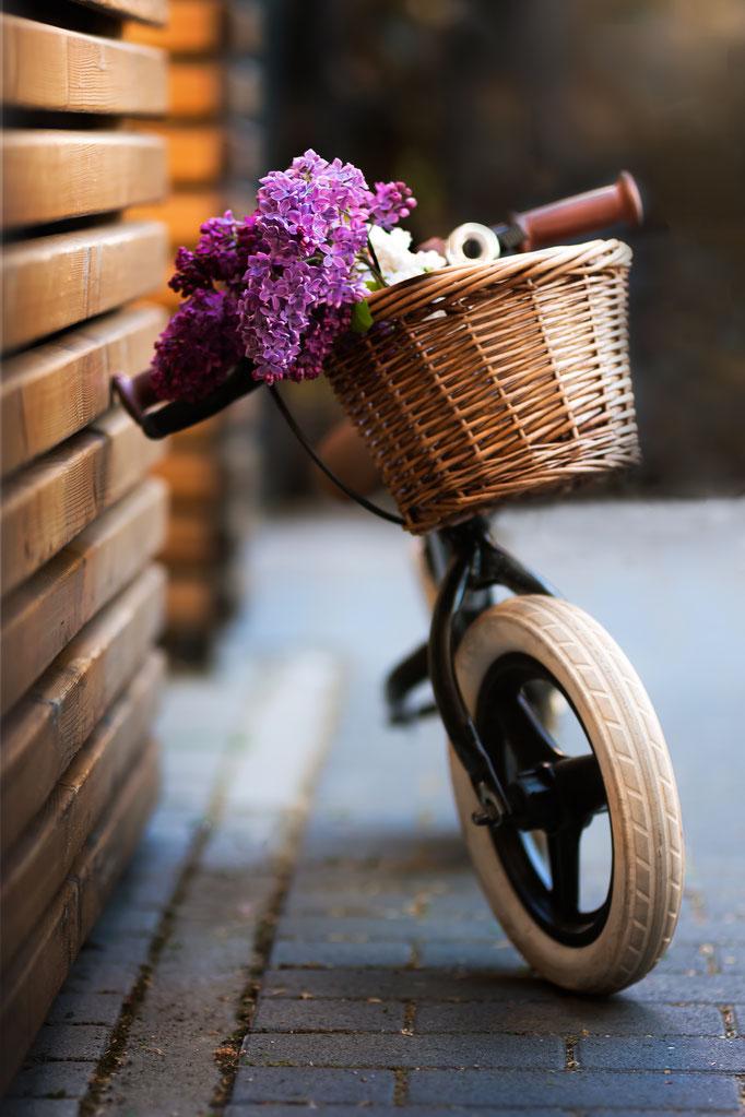 Die 5 schönsten Fahrräder für Fahranfänger(innen)